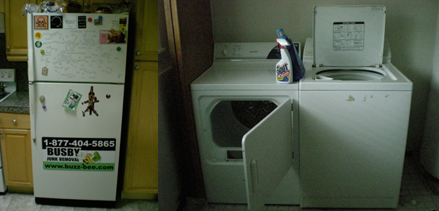 Refrigerator and Washing Machine awaiting Removal
