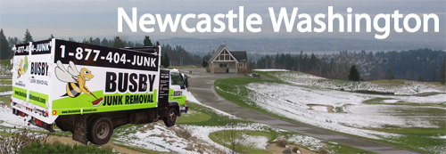 newcastle wa junk removal